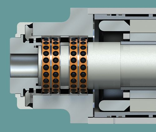 Spindle_section-3.jpg